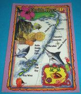 Florida Keys Carte Geografiche Mappa Cartina USA Cartolina Particolari Monete Galeone Conchiglie Squalo .. - Carte Geografiche