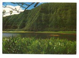 REUNION - Le Grand Etang - Plaine Des Palmistes - La Réunion