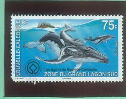 Océanie - Nouvelle Calédonie -  YT 11167 Oblitéré - Neukaledonien