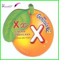 """Magnet Pochoir GERVAIS L'Alphabet Avec Les Fruits Et Les Légumes """" Le X De Ximenia Americana """" Citron Des Mers - Letters & Digits"""