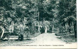 CPA -  LA-BAULE-LES-PINS - PARC DES DRYADES - AVENUE D'ENTREE (ETAT PARFAIT) - La Baule-Escoublac