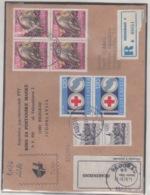 JOUGOSLAVIA REGISTERED MICHEL 1619 (2) RED CROSS FALCO PEREGRINUS - 1945-1992 République Fédérative Populaire De Yougoslavie