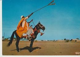 CP - PHOTO - REPUBLIQUE DU NIGER - 5874 - JOUEUR DE TROMPETTE HAOUSSA - IRIS - Niger