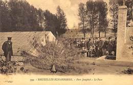 Schaerbeek - Parc Josaphat - Le Paon (animée 1921) - Schaarbeek - Schaerbeek