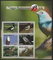 Malawi (2018) - MS -  /  Aves - Birds - Oiseaux - Vogel - Vogels