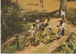 CP - PHOTO - IMAGES DU GABON - DEBARCADERE A NZANAYONG - A 109 - J. TROLEZ - Gabón