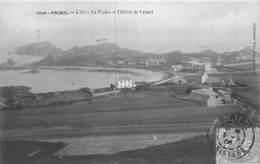PIE.F-19-3344 : PRIMEL - Primel
