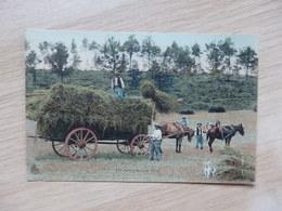 Agriculture - La Rentrée Des Blés - Attelage - Colorisée - ELD - 2 Scans - Attelages