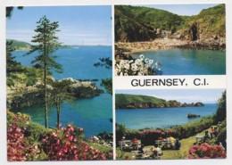 AI31 Guernsey Multiview - Guernsey
