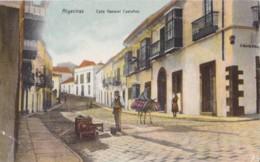 AQ22 Algeciras, Calle General Castanos - Animated, Donkey - Cádiz