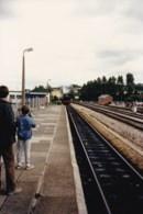 AL53 Photograph - 1980's Dartmouth Steam Railway 8 - Trains
