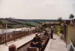 AL53 Photograph -  Miniature Railway 4 - Trains