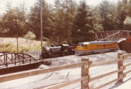 AL53 Photograph -  Miniature Railway 9 - Trains