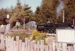 AL53 Photograph -  Miniature Railway 10 - Trains