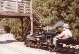 AL53 Photograph -  Miniature Railway 11 - Trains