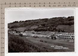 Cossonay - Câbleries Et Tréfileries (1957) - VD Vaud