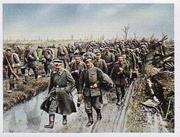 Sammelbild Eckstein-Halpaus Dresden - Der Weltkrieg 1917 - Armierungssoldaten Siegfriedstellung - Nr. 127 (40465) - Zigarettenmarken