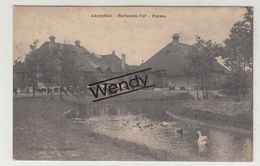 Kapellen (Hortensiahof - Ferme 1908) Uitg. Hoelen - Kapellen
