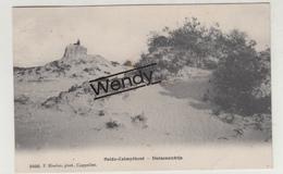 Kalmthout (duinenzicht) Uitg. Hoelen N° 30006 - Kalmthout