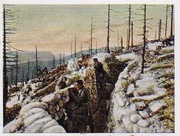 Sammelbild Eckstein-Halpaus Dresden - Der Weltkrieg 1916 - Österreichischer Graben Am Isonzo Italien -  Nr. 115 (40479) - Zigarettenmarken