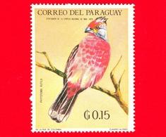 Nuovo - MNH - PARAGUAY - 1969 - Fauna Selvatica Dell'America Latina - Uccelli - Tagliafoglie  - Phytotoma Rutila - 0.15 - Paraguay