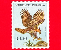 Nuovo - MNH - PARAGUAY - 1969 - Fauna Selvatica Dell'America Latina - Uccelli - Aquilastore - Spizaetus Ornatus - 0.30 - Paraguay