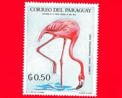 Nuovo - MNH - PARAGUAY - 1969 - Fauna Selvatica Dell'America Latina - Uccelli - Fenicottero Rosso - Phoenicopterus Ruber - Paraguay