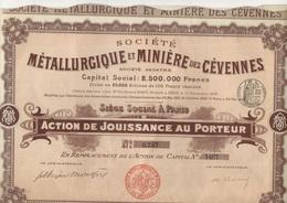 ACTION DE 100 FRS - SOCIETE METALLURGIQUE ET MINIERE DES CEVENNES - DIVISE EN 25000 ACTIONS -1901 - Mines