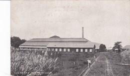 Sainte Lucia :  Cul De Sac Sugar Factory - Autres