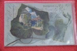 Niedersachsen Hildesheim Gruss Dom Der 1000 Jahr. Rosenstock 1899 - Allemagne