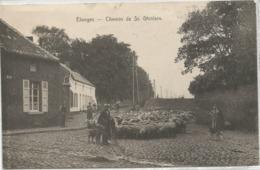 Elouges Chemin De Saint-Ghislain Avec Berger - Dour
