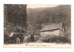 Luchon-Dans La Montagne-(D.301) - Luchon