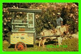 BARBADOS - NATIVE DRINK SELLER - TRAVEL IN 1964 - DEXTER PRESS INC - - Barbades