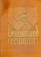 Deutschland Erwacht. Histoire Illustrée Du NSDAP De 1920 à 1933. Cigaretten-Bilderdienst, Hamburg- Bahrenfeld 1933 - Livres, BD, Revues