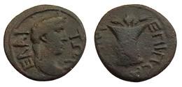 [H] +++ AE16 -- Pseudo-autonomous --  ELAIA / ELAEA In Aiolis - Apollon / Modius With Grain Ears And Poppy- VF - R! +++ - Römische Münzen