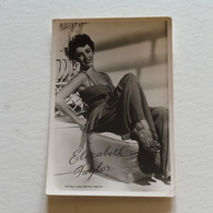 ELISABETH TAYLOR - Métro Goldwyn Mayer - Photo Véritable - Acteurs