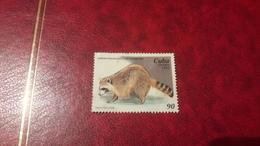 1995 Animals From Havana Zoological Gardens - Usati