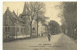 Cappellen Antwerpschen Steenweg    (1032) - Kapellen