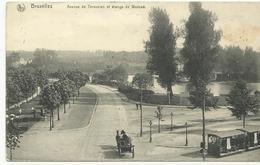 Bruxelles Avenue De Tervueren Et étangs De Woluwé (1040) - Lanen, Boulevards
