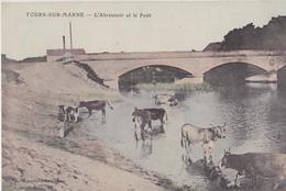 TOURS SUR MARNE  L'abreuvoir Et Le Pont - Autres Communes