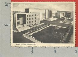 CARTOLINA VG ITALIA - ROMA - Città Universitaria - 10 X 15 - ANN. 1941 POSTA MILITARE - Enseignement, Ecoles Et Universités