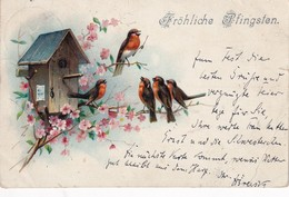 ALLEMAGNE 1899 CARTE POSTALE SCHÖNE PFINGSTEN - Pentecôte