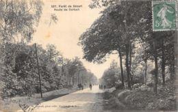 Forêt De Sénart (91) - Route De Corbeil - France
