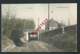 GROENENDAEL. ( Hoeilaart )  La Passerelle En Couleur. Circulé En 1913. Voir Dos.   M. Marcovici - - Hoeilaart