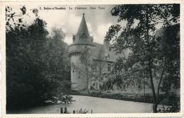 CPA - Belgique - Soire-sur-Sambre - Le Château - België