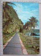 S.Tomé E Principe - Estrada Para Santa Catarina - SP1996 - Sao Tome And Principe