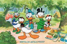 DonaldDuck - Illustrateurs & Photographes