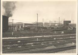 Grande Photo - Gare à Localiser - Thème Chemin De Fer - Trains