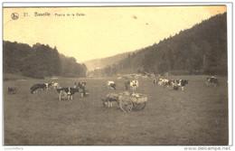 Sainte-Ode - Baseille - Prairie De La Vallée - Attelage Avec âne - Nels - 2 Scans - Sainte-Ode