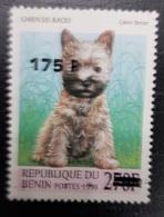 BENIN 1998 DOG CHIEN 175 F- OVERPRINT SURCHARGE OVERPRINTED SURCHARGED - RARE MNH - Benin - Dahomey (1960-...)